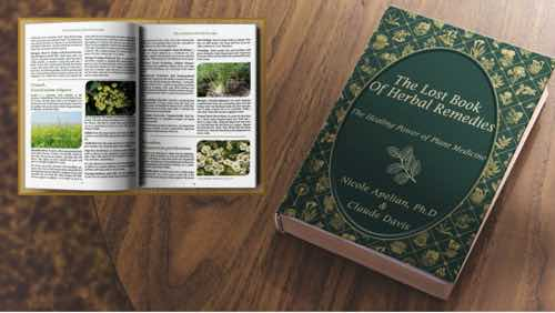 Lost Book of Herbal Healing Properties
